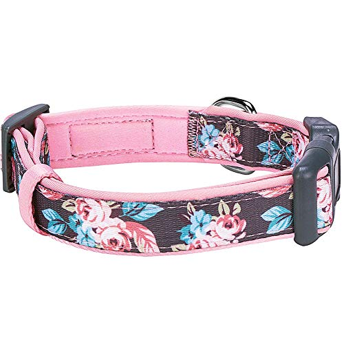 Blueberry Pet 6 Patterns Soft & Comfy Welcoming Spring Rose Flower Prints Girly Padded Dog Collar, Medium, Neck 14.5-20, Adjustable Collars for Dogs