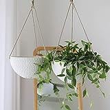 LA JOLIE MUSE 10 Inch Hanging Planters for Indoor