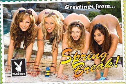 Theme Sexy girls on spring break