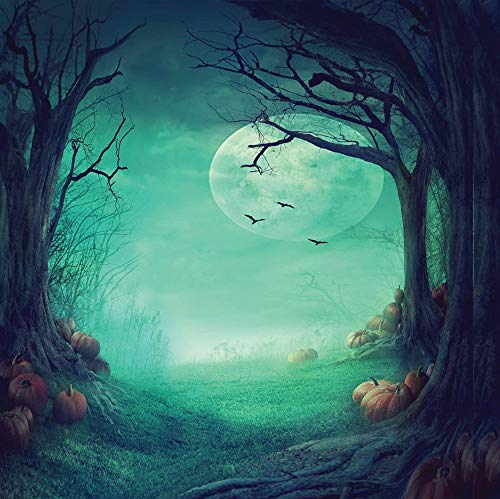 Halloween Horror Nights Backgrounds (8x8ft Halloween Backgrounds Horror Nights Moon & Mysterious Forest & Hallowmas Party Masquerade Decoration Photo Backdrops Customized Studio Props)
