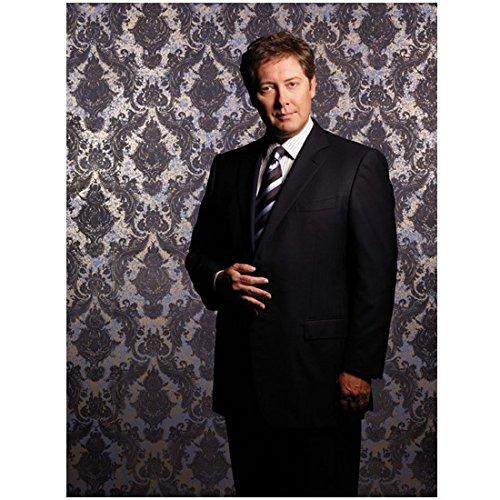 Boston Legal 8 x 10 Photo Boston Legal James Spader/Alan Shore Black Suit Diagonal Striped Tie Vintage Wallpaper Pose 3 kn