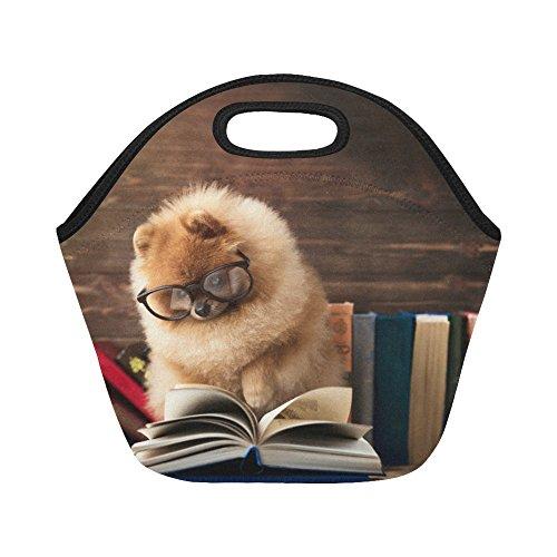 InterestPrint Insulated Lunch Tote Bag Clever Pomeranian Dog Reusable Neoprene Cooler, Puppy Books Portable Lunchbox Handbag for Men Women Adult Kids Boys Girls