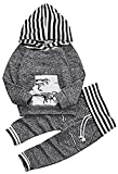 Younger star Toddler Infant Baby Boys Dinosaur Long Sleeve Hoodie Tops Sweatsuit Pants Outfit Set, Gray, 18-24Months  100