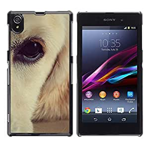 Vortex Accessory Carcasa Protectora Para Sony Xperia Z1 L39 C6902 C6903 C6906 C6916 C6943 - Labrador Retriever White Brown Eye Dog -