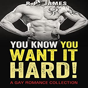 You Know You Want It Hard! Audiobook