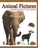 Animal Pictures Alphabetically with Names, Dinesh Rajan, 145368638X