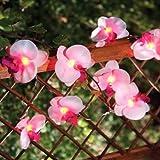 Solalux Set of 12 Orchid Flower Garden Solar String Lantern Fairy Lights Lamps