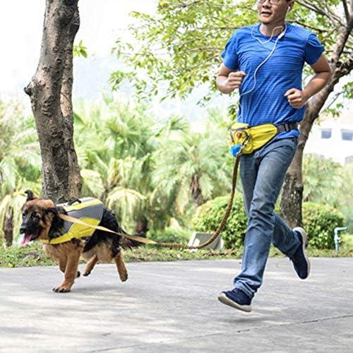Imagine Correa para Perro de Manos Libres Naranja, Correa para ...