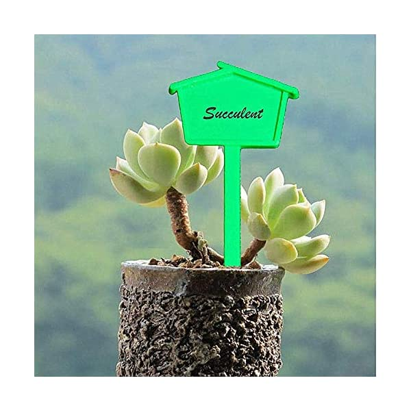 KANKOO Garden Tags Plant Labels for Seed Plant Labels for Vegetables Plant Labels for Potted Plant Labels for Outdoor… 4 spesavip