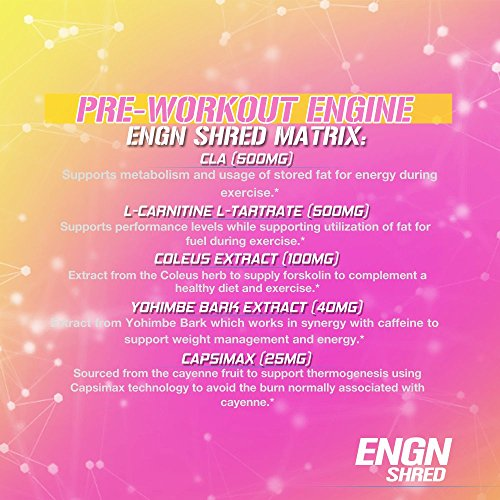 Evlution-Nutrition-ENGN-Shred-Pre-Workout-Thermogenic-Fat-Burner-Powder-Energy-Weight-Loss-30-Servings-Pink-Lemonade