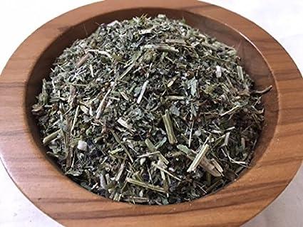 Holy Basil Dried Herbs FREE SHIP