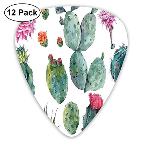 Guitar Picks - Abstract Art Colorful Designs,Desert Botanic Herbal Cartoon Like Cactus Plant Flower With Spikes Print,Unique Guitar Gift,For Bass Electric & Acoustic Guitars-12 Pack