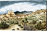 Joshua Trees by Peter Potter Canvas Art Wall Picture, Gallery Wrapped with Image Around Edge, 25 x 17 inches For Sale