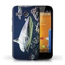STUFF4 Phone Case / Cover for Motorola MOTO G (2013) / Blacktip Shark Design / Marine Wildlife Collection