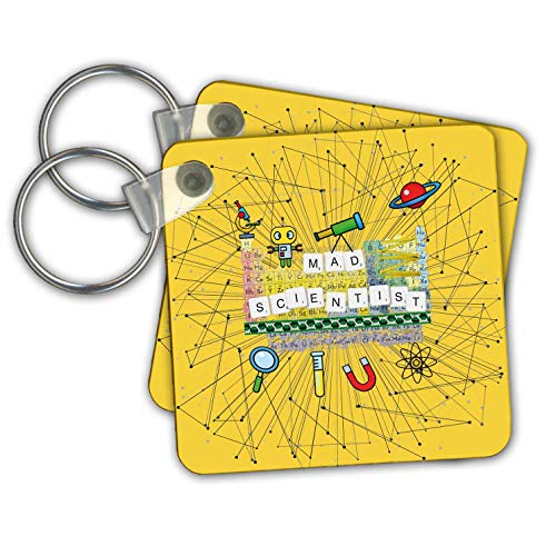Beverly Turner Science Design - Mad Scientist, Microscope, Robot, Telescope, Planet, Atom, and Magnet - Key Chains - set of 2 Key Chains (kc_306396_1)