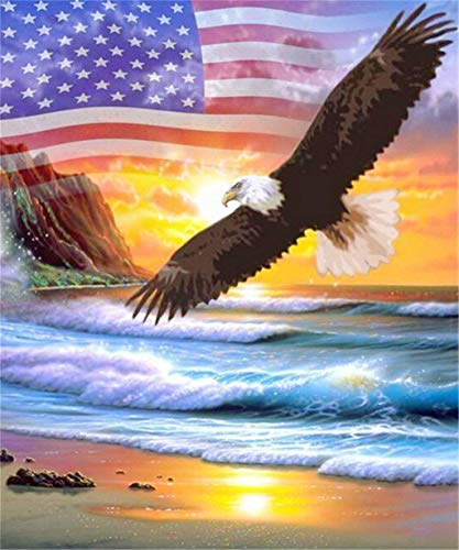 YINYINEE 5D Diamond Painting Kits for Adults Full Drill American Flag Eagle Embroidery Rhinestone Painting ()