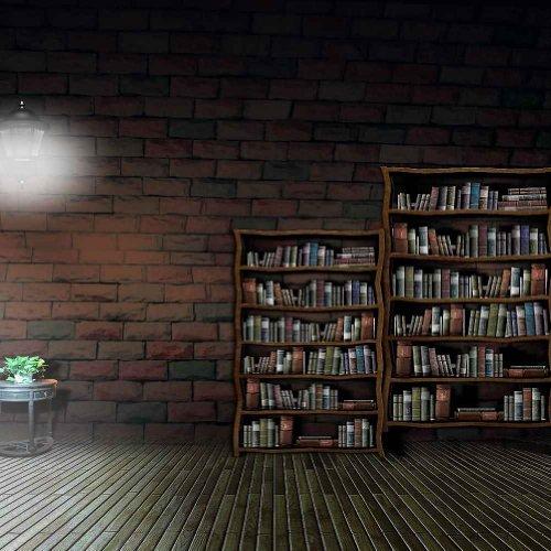 GladsBuy Silent Bookshelves 8' x 8' Digital Printed Photography Backdrop Bookshelf Theme Background YHA-266 (Tall Foot 8 Bookshelves)