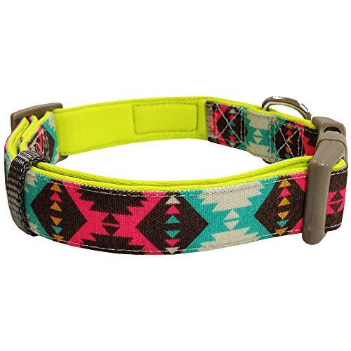 Blueberry Pet 2 Colors Soft & Comfy Vintage Tribal Pattern Padded Adjustable Dog Collar, Extravagant Green, Large, Neck 18-26
