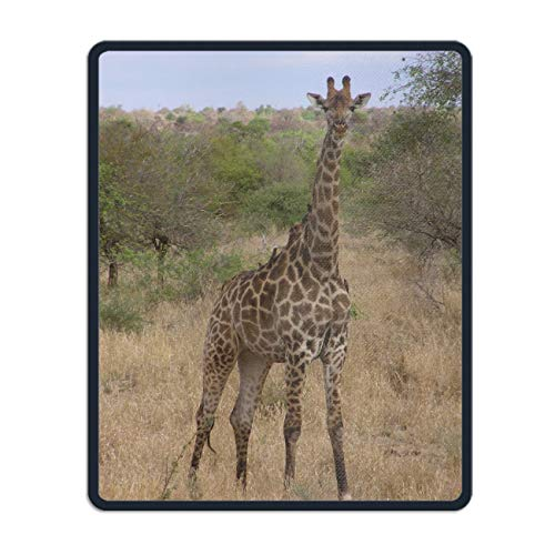 (Southern Giraffe Mouse Pads with Design,with Stitched Edges,Non Slip Rubber Mouse Mat)