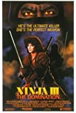the 3 ninjas - Ninja III: The Domination