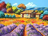 Cottage in Lavender Field Hand Painted Design