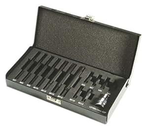 Laser 3099 - Juego de puntas ribe (14 piezas)