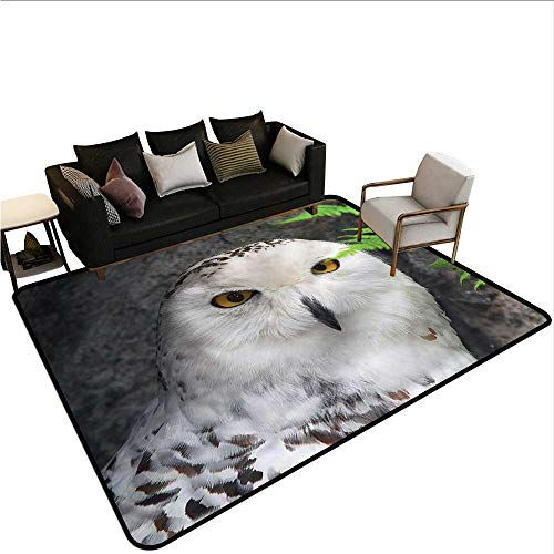 (Wizard,Anti-Slip Coffee Table Floor Mats 64