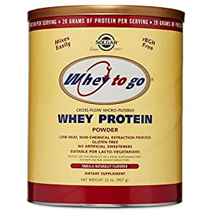 Solgar – Whey to Go Protein Powder, Natural Vanilla Flavor