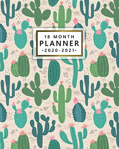 18 Month Planner 2020-2021: Pretty Desert Saguaro Cactus Weekly Planner & Calendar with Monthly Spread Views – 18 Month…