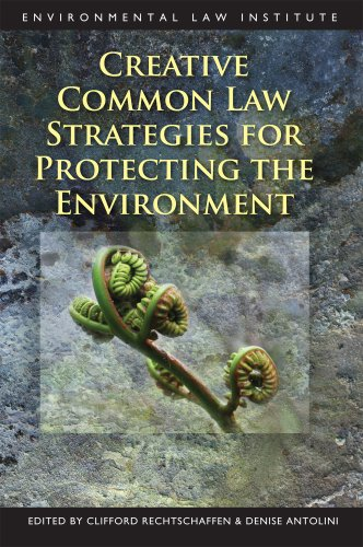 Creative Common Law Strategies for Protecting the Environment (Environmental Law Institute)