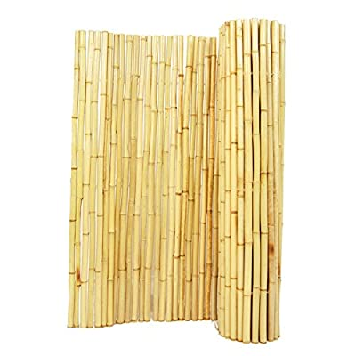 Natural Exotic Tropical Look Bamboo Fencing, 1in D x 4ft H x 8ft L