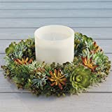 BrylaneHome Succulent Wreath Centerpiece with Candle (Multi,0)