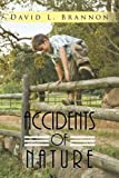 Accidents of Nature, David L. Brannon, 1491828358