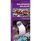 Galapagos Wildlife: A Folding Pocket Guide to Familiar Animals (Pocket Naturalist Guide Series) by Kavanagh, James (2001) Pamphlet