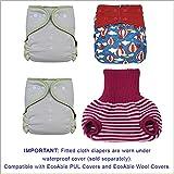Hemp Fitted Cloth Diaper: Baby Overnight Diaper