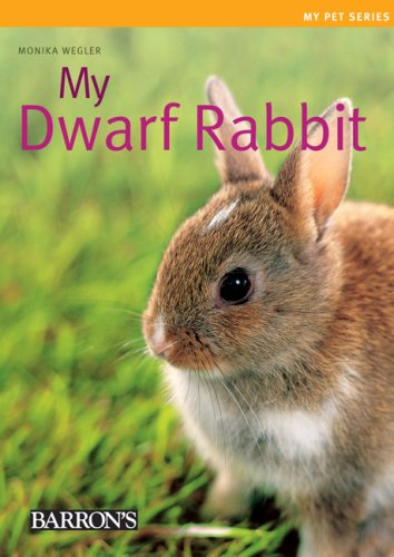 My Dwarf Rabbit (My Pet Series)
