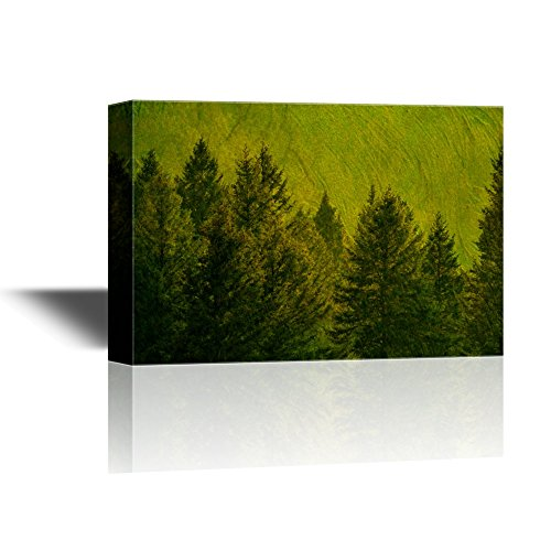 Landscape with Green Pine Trees on Abstract Background Gallery