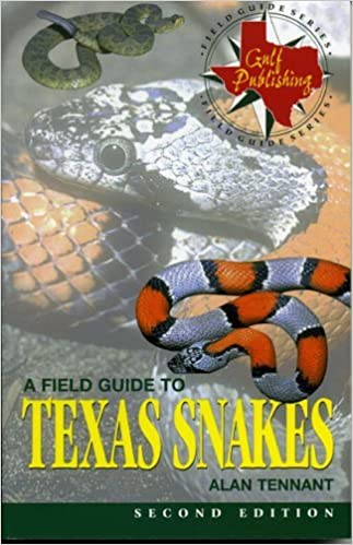 A Field Guide to Texas Snakes (Field Guide Series) by Alan Tennant (1998-12-24)