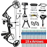 """TOPOINT ARCHERY Ship from USA Warehouse Compound Bow Package M1,19""""-30"""" Draw Length,19-70Lbs Draw Weight,320fps IBO Limbs Made in USA"""