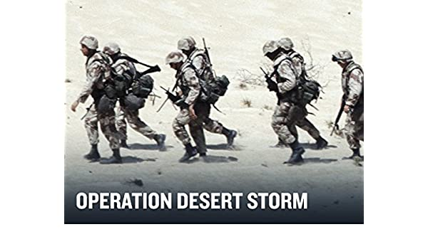 Image result for desert storm""