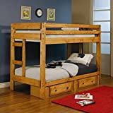 Coaster Home Furnishings 460243 Transitional Bunk Bed, Amber Wash