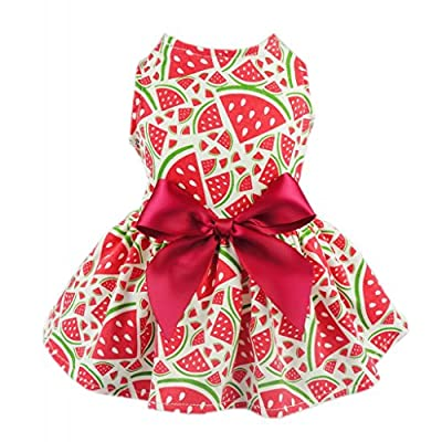 Fitwarm Sweetie Watermelon Pet Clothes for Dog Dress Sundress Shirts - Red