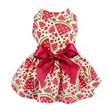 Fitwarm Sweetie Watermelon Pet Clothes for Dog Dress Sundress Shirts - Red - XX-small