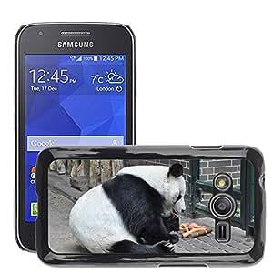 Etui Housse Coque de Protection Cover Rigide pour // M00113861 Panda oso de panda gigante Blanco Negro // Samsung Galaxy Ace4 / Galaxy Ace 4 LTE / SM-G313F