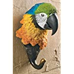 Yellow Parrot Wall Hook