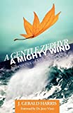 img - for A Gentle Zephyr - A Mighty Wind: Silhouettes of Life in the Spirit book / textbook / text book