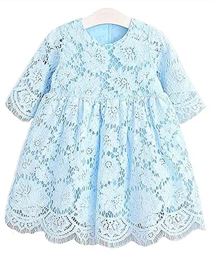 2Bunnies Girl Baby Girl Vintage Holly Floral Lace Flower Girl Dress (Blue, 6)