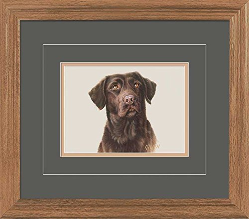 Chocolate Lab Portrait GNA Deluxe Framed Print by Jim Killen