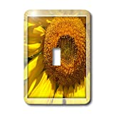 3dRose LLC lsp_37985_1 Yellow Sunflower Frame Floral- Flowers- Photography, Single Toggle Switch