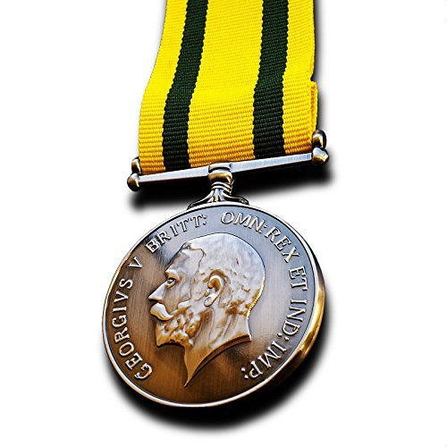 Goldbrothers13 Military Medal Territorial Force War Medal Territorial Army Nursing Service TF WW1 Copy
